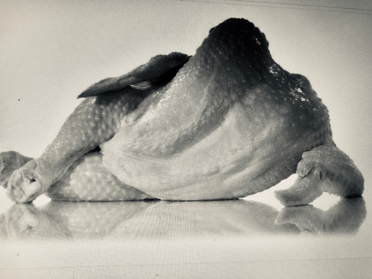 A Black and white photo of a plucked chicken reclining on its side with its legs crossed seductively