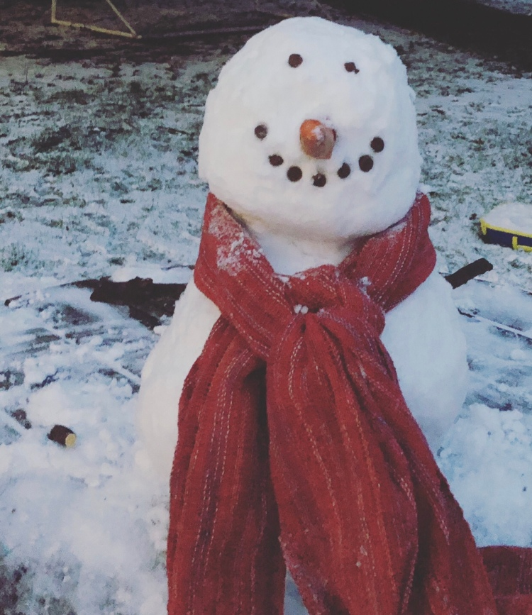 A photo of a jolly looking snowman with a red scarf, a carrot for a nose and clearly marked eyes and smiling mouth