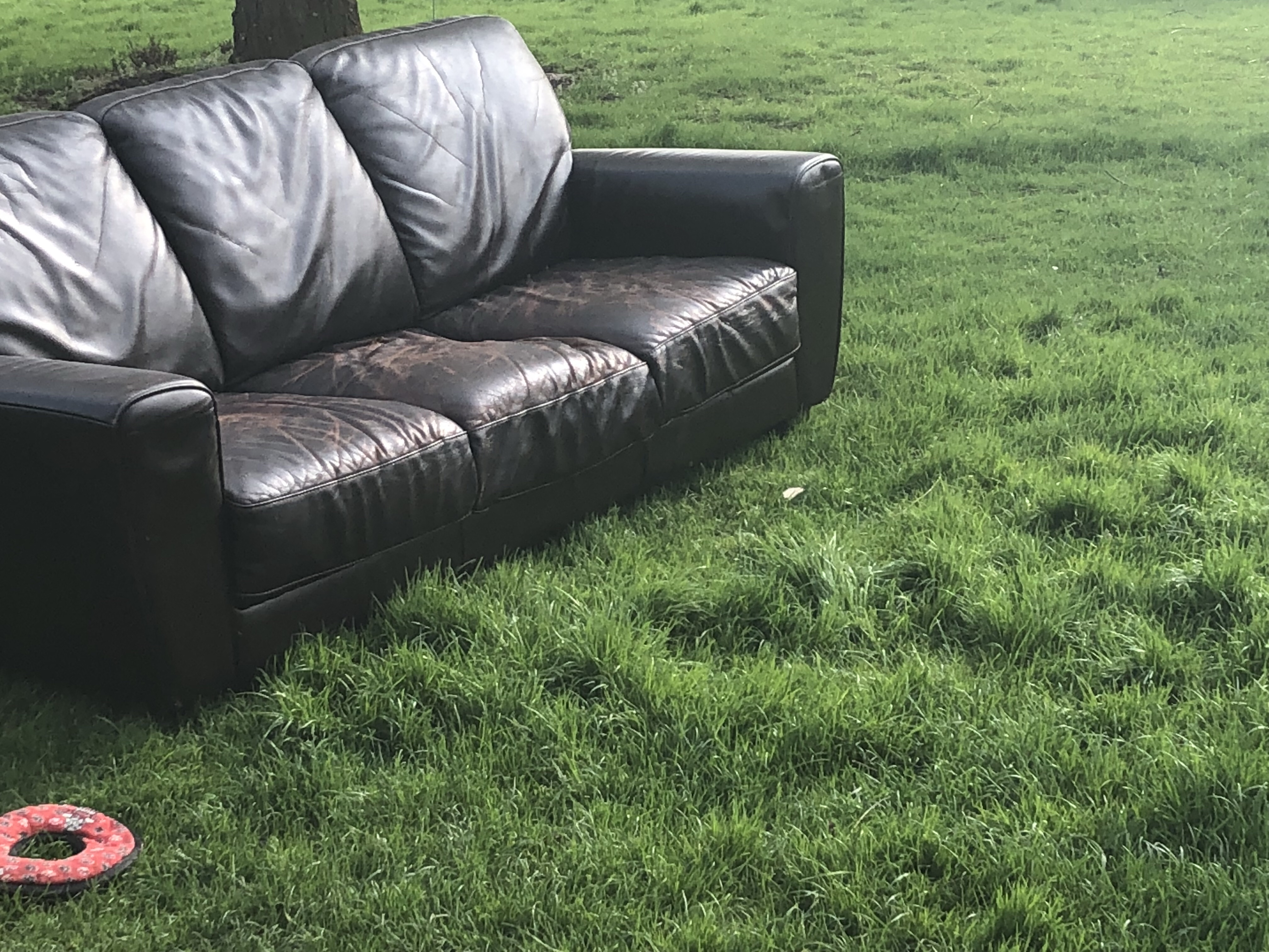 Our Next Door Neighbour Keeps Calling Us U0027The Dinglesu0027 Cheeky Sod. The Old  Sofa Is Out In The Garden Because We Ordered A Beautiful New One From John  Lewis ...